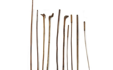 Group of ten carved and naturalistic wood canes or...