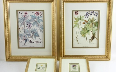 Two Pairs of Framed Floral Prints