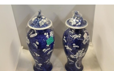 Pair of Early 19th Century Blue and White Vases with Kanxzi ...