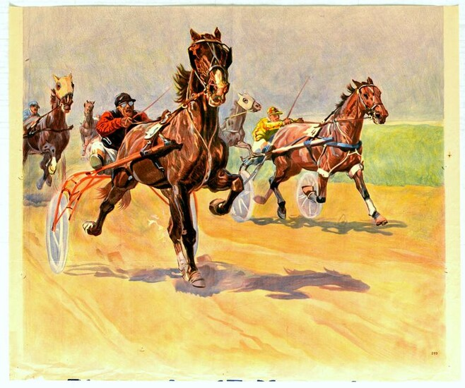 Sport Poster Horse Racing Harness