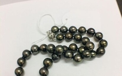 tahitian pearl necklace.
