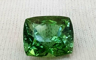 Natural Green Tourmaline Faceted Top Quality Loose Gems