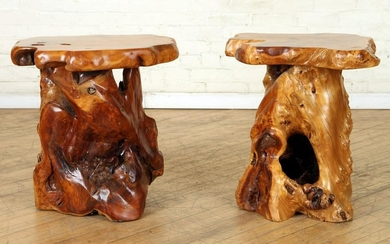 PAIR NATURAL WOOD END TABLES EXOTIC WOOD TOPS