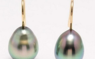 18 kt. Yellow Gold - 9x10mm Peacock Tahitian Pearl