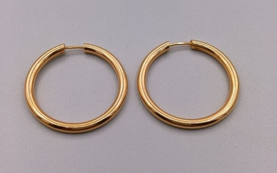 19,2 kt. Gold - Earrings