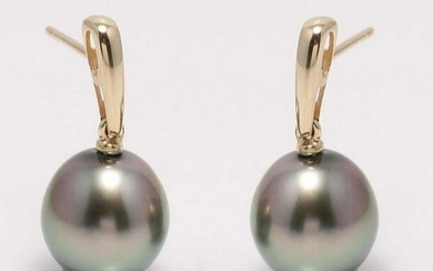 14 kt. Yellow Gold - 10x11mm Peacock Tahitian Pearl