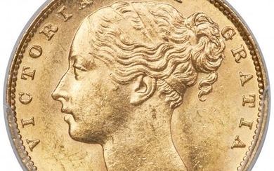 """31183: Victoria gold """"Shield"""" Sovereign 1884-M MS64 PCG"""