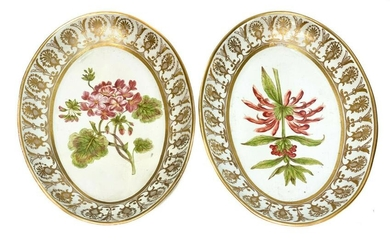 Pair Continental Oval Botanical Floral Dishes