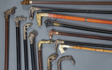 Lot of 20 canes mostly with handles in...