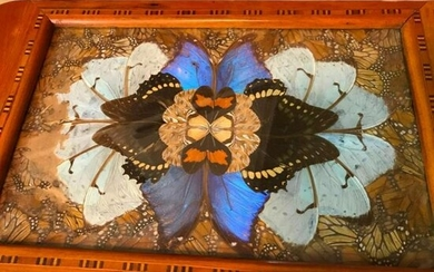 Vintage Art Deco Butterfly Wing & Inlaid Wood Tray