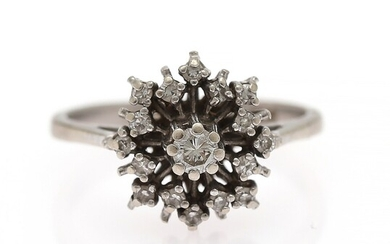 A diamond ring set with a brilliant-cut diamond encircled by numerous diamonds weighing a total of app. 0.30 ct., mounted in 14k white gold. Size 52.
