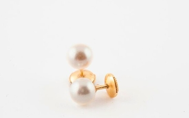 Pair of yellow gold (750) ear studs with white cultured pearls.