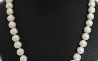 A pearl necklace set with numerous cultured South Sea pearls, clasp of 14k gold. L....