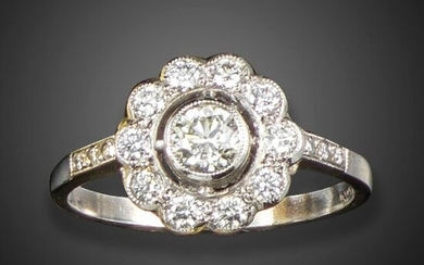 A diamond cluster ring, the round brilliant-cut diamond set within a surround of circular-cut diamonds, with further diamonds to the shoulders in platinum, diamonds approximately 0.70cts total, size N 1/2