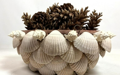 Natural Shell Planter. Shells glued to terra-cotta plan