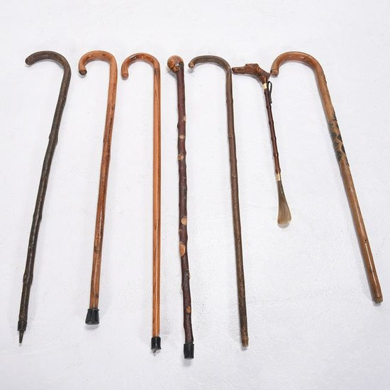Six Wood Walking Canes and a Carved Figural Shoe Horn.