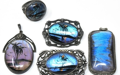 Vintage Butterfly Wing Pendants, Ring, Brooches