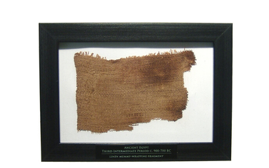 A large swatch of Egyptian mummy linen