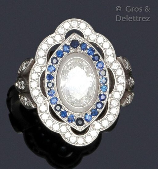 """Ring """" Fleur """" in platinum, set with an oval diamond in a double surround of sapphires and brilliant-cut diamonds. Turn of doigt : 46. P. Brut : 9.8 g."""