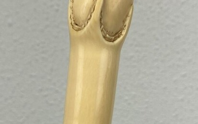 Walking stick with an ivory claw and egg handle - Ivory certificate included - Ivory - Circa 1890