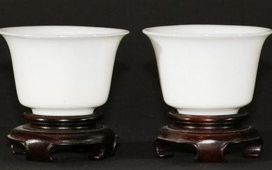 CHINESE PORCELAIN CUPS, 19TH C., 2 PCS, H 1.75""