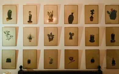 Eighteen printed herbarium plates representing mainly cacti.