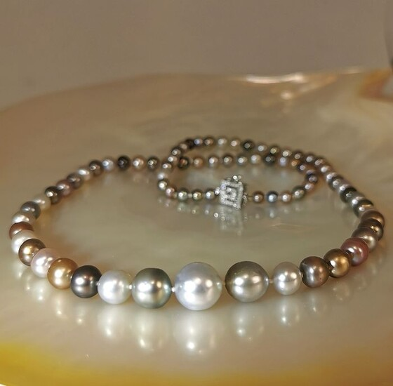 # LOW RESERVE PRICE # - 14 kt. Natural pearls, White gold, For collectors - Certified Natural pearls SSEF Laboratory - Necklace - Diamonds