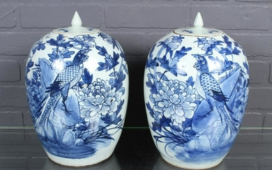 Pair Asian Blue and White Lidded Jars