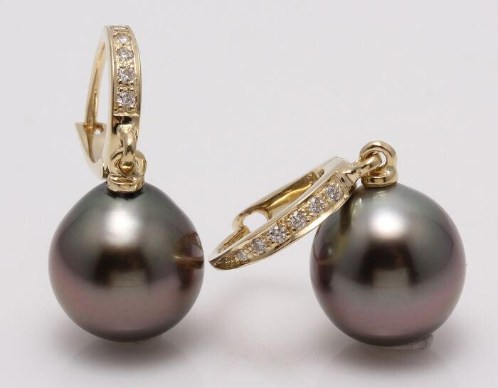 14 kt. Yellow Gold - 9x10mm Peacock Tahitian Pearl