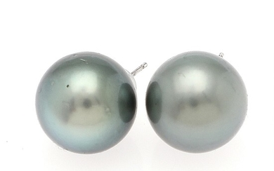 A pair of Tahiti pearl ear studs each set with a cultured Tahiti pearl, mounted in 14k white gold. Diam. app. 13.7 mm. (2)