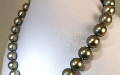 #LOW RESERVE PRICE# Steel, Tahiti pearls, Choker Size 12 to 12,9 mm - 45cm lenght - Necklace