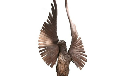 Patricia Payne Bronze and Steel Spread Winged Eagle