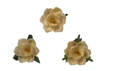 Vintage Shell Craft Southern Magnolia Pins Brooches
