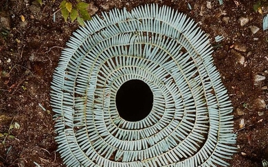 † § Andy Goldsworthy O.B.E. (British B.1956) STARTED CLIMBING