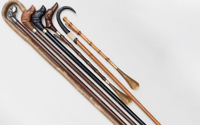 Group Walking Sticks and Shoe Horns