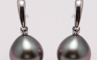NO RESERVE PRICE - 14 kt. White Gold - 10x11mm Peacock Tahitian Pearl Drops - Earrings