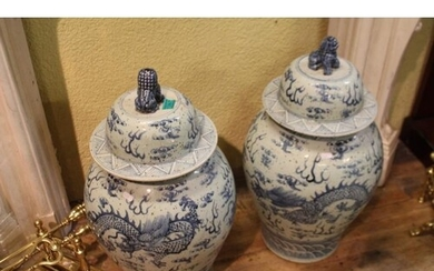 Pair of Blue and White Porcelain Urns with Oriental Dragon D...