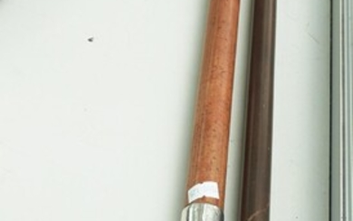 TWO 1900S CANE AND WOODEN WALKING STICKS, ONE WITH HORN HANDLE AND BOTH WITH STERLING SILVER COLLAR AND CAP