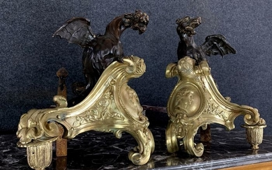 Pair of bronze regency andirons with double patina depicting winged dragons - Bronze, Iron (cast/wrought) - Mid 18th century