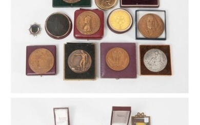 """Set of bronze or metal medals with patina on different subjects (Chateaubriant, Prisoners of War """"Rawa Ruska"""", Chemistry, Education 1966, Medicine, Tidal-Motor Factory 1966, Academy of Sciences 1966, Youth and Sport, Brittany 1967, Rennes)."""